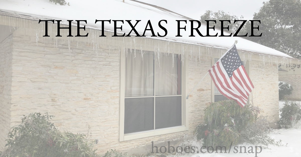 The Texas Freeze