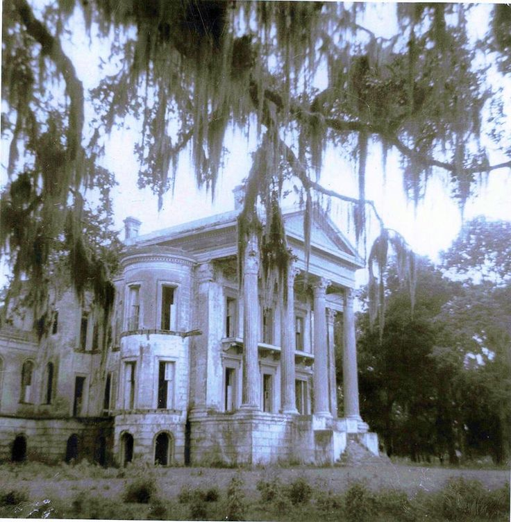 Belle Grove through cypress