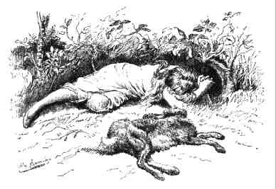 The dead hare