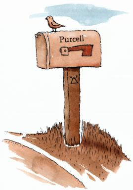 Carolyn Purcell's mailbox