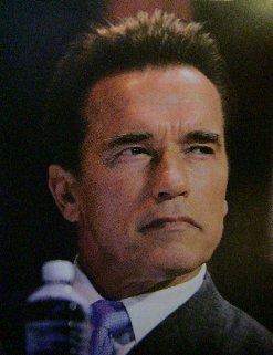 Arnold Schwarzenegger 2006