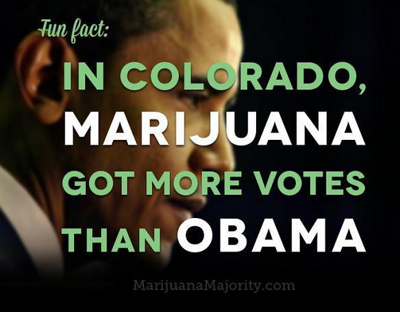 Marijuana vs. Obama