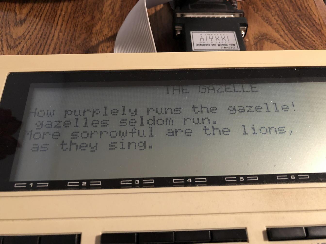 TRS-80 Model 100 gazelle poetry