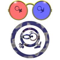 The Lenses of Gender thumbnail